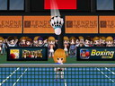 Badminton 3D