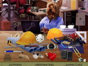 Hidden Object – Working Dogs