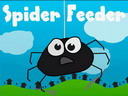 Spider Feeder