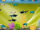 Tap Fish