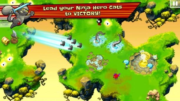 Ninja Hero Cats (1)