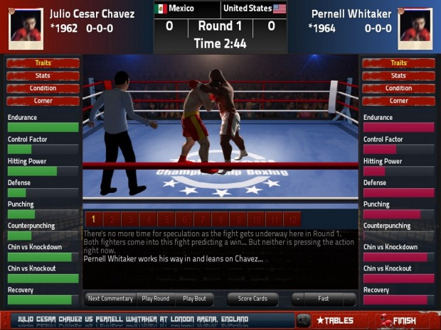 Title Bout Boxing 2013 (1)