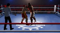 Title Bout Boxing 2013 Cover