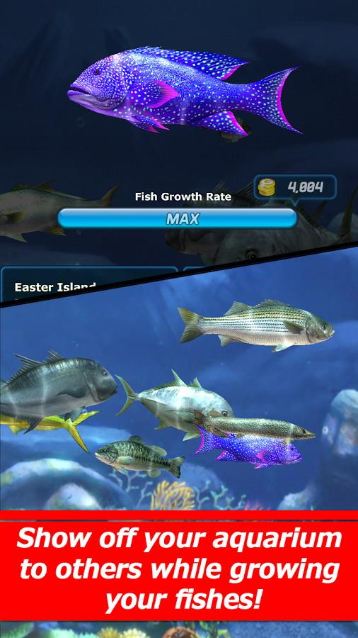 ... Ace Fishing Wild Catch (3)