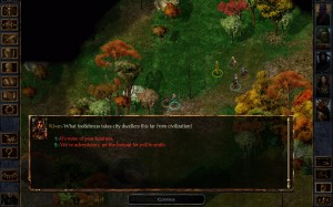 Baldur's Gate Enhanced Edition (3)