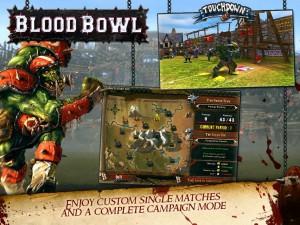 Blood Bowl (3)